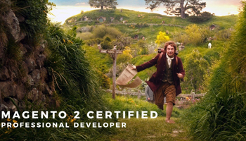 Magento 2 Professional Developer Certification - My Journey